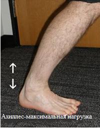 Максимальная нагрузка при ходьбе - подъем пятки
